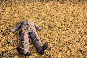 [Comment] The Jobkiller Verdi: Preserve instead of Create